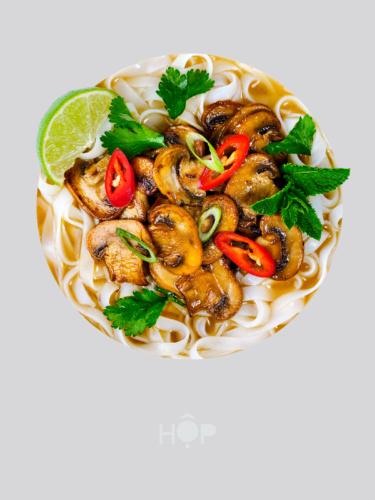 HOP Vietnamese